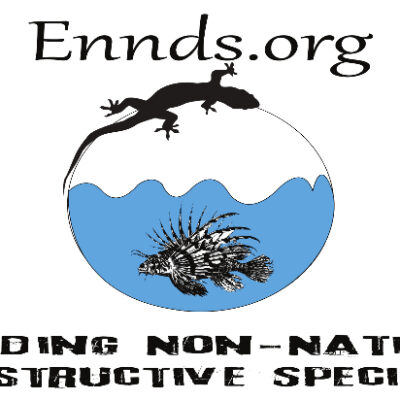Ennds sticker
